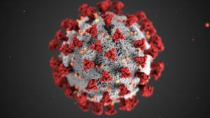 Image: The COVID-19 Virus